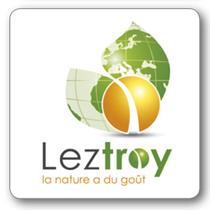 logo-leztroy